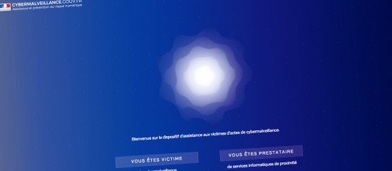 Zoom sur la plate-forme Cybermalveillance.gouv.fr