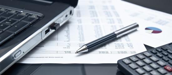 Information de l'entreprise lors d'une vérification de comptabilité informatisée
