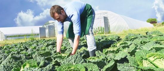 Un guide pour évaluer la pénibilité en agriculture