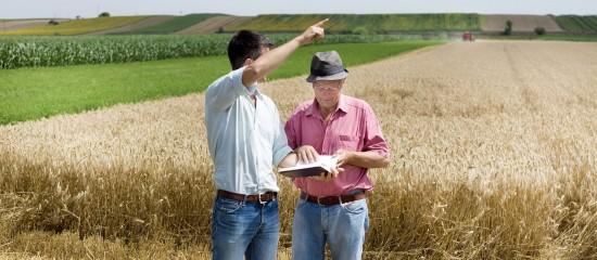 reprise-de-terres-agricoles-pour-les-exploiter-dans-le-cadre-d-une-societe