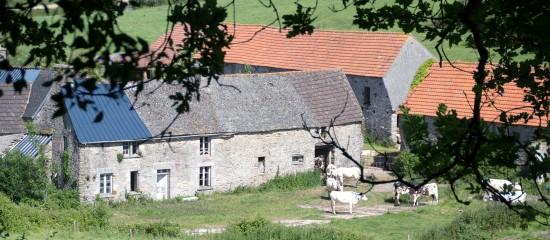 reprise-par-le-bailleur-de-terres-agricoles-louees-gare-au-contenu-du-conge
