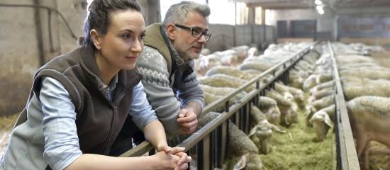 conjoint-travaillant-sur-l-exploitation-agricole-declaration-obligatoire
