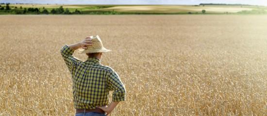 droit-de-preemption-du-fermier-en-cas-de-vente-d-un-terrain-agricole