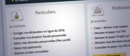 Corriger En Ligne Sa Declaration De Revenus 2015 C Est Encore