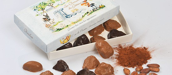 Chocadom.com: spécialités chocolatières en ligne
