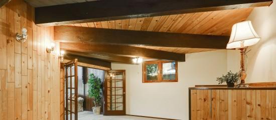 Achat d'un immeuble infesté de termites non détectés par le diagnostiqueur