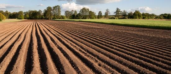 Vente de la nue-propriété et de l'usufruit d'un bien agricole